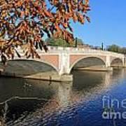 The River Thames At Hampton Court London Poster