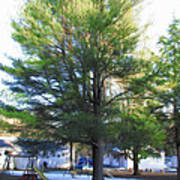Tree 1 Poster