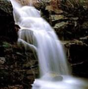 Wildcat Falls Poster