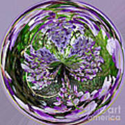 Wisteria Orb Poster