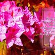 Zephaniah 3 17 Poster