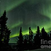 The Aurora Borealis Poster