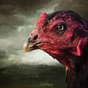 22. Game Hen Poster