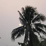 Beautiful Evening Poster by Gornganogphatchara Kalapun