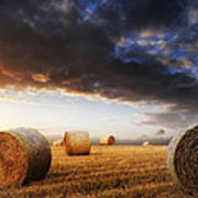 Beautiful Golden Hour Hay Bales Sunset Landscape Poster by Matthew Gibson