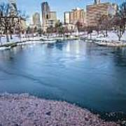 Charlotte North Carolina Marshall Park In Winter Poster