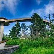 Clingmans Dome - Great Smoky Mountains National Park Poster
