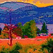 Cowichan Bay From Doman's Road Poster
