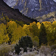 Eastern Sierras In Autumn Poster