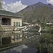 Fallen Tree In Water Pool Inside The Shalimar Garden In Srinagar Poster