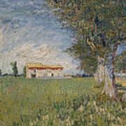 Farmhouse In A Wheat Field Poster