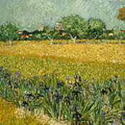 Field With Flowers Near Arles Poster
