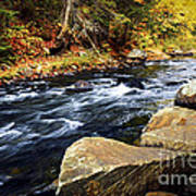 Forest River In The Fall Poster