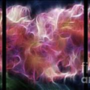 Gladiola Nebula Triptych Poster