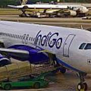Indigo Aircraft Getting Ready In Changi Airport Poster