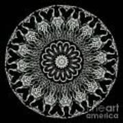 Kaleidoscope Ernst Haeckl Sea Life Series Black And White Set On Poster