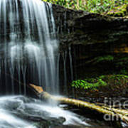 Lin Camp Branch Waterfall Poster