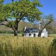 Little Farm House Poster