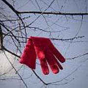 Lost Glove Poster