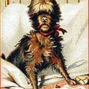 Medicine Trade Card, C1880 Poster
