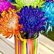 Multicolored Chrysanthemums  Poster