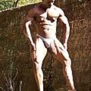 Muscle Art Poster by Jake Hartz