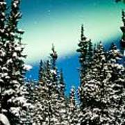 Northern Lights Aurora Borealis And Winter Forest Poster