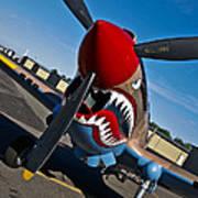Nose Art On A Curtiss P-40e Warhawk Poster
