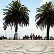 Palm Tree Illusion Poster