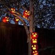 Pumpkin Escape Over Fence Poster