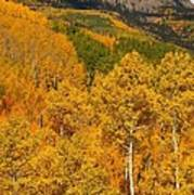 San Juan Mountains In Autumn Poster