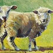 Sheep Painting Poster