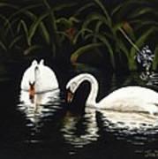 Swans II Poster