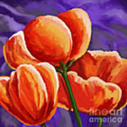 3 Tulips Red Purple Poster