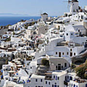Windmills And White Houses In Oia Poster
