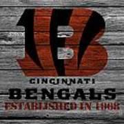 Cincinnati Bengals Poster