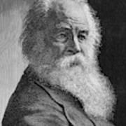 Walt Whitman (1819-1892) Poster