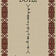 Doyle Written In Ogham Poster