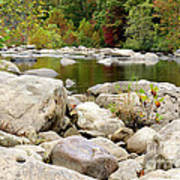 Fall Along Cherry River Poster
