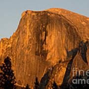 Half Dome, Yosemite Np Poster