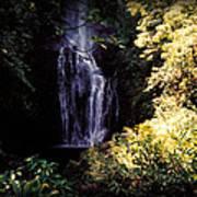 Maui Waterfall Poster