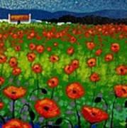 Poppy Field Poster by John  Nolan