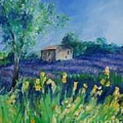 Provence Lavender Field Poster