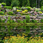 Rocks And Plants In Rock Garden Poster