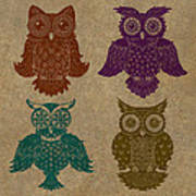 4 Sophisticated Owls Colored Poster by Kyle Wood