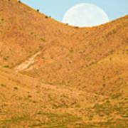 Usa, New Mexico, Bosque Del Apache Poster