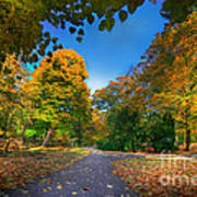 Alley With Falling Leaves In Fall Park Poster