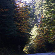 Autumn 4 Poster