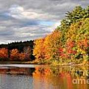 Fall Foliage In New England Poster
