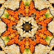 Kaleidoscope Vegetable Sushi Poster